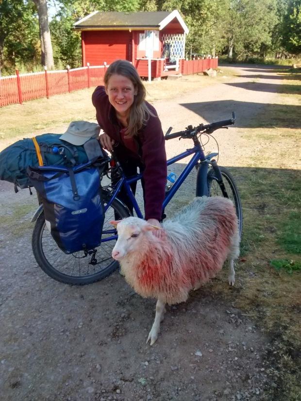 2016_Schweden Radtour_004 - Kopie